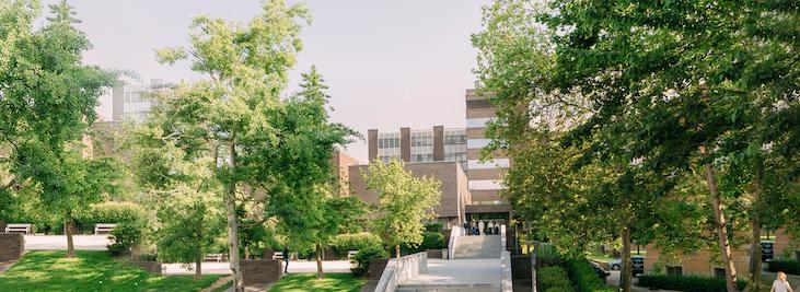 Ljetna škola »Paliativna oskrba/Paliative Care – an interdisciplinary approach«